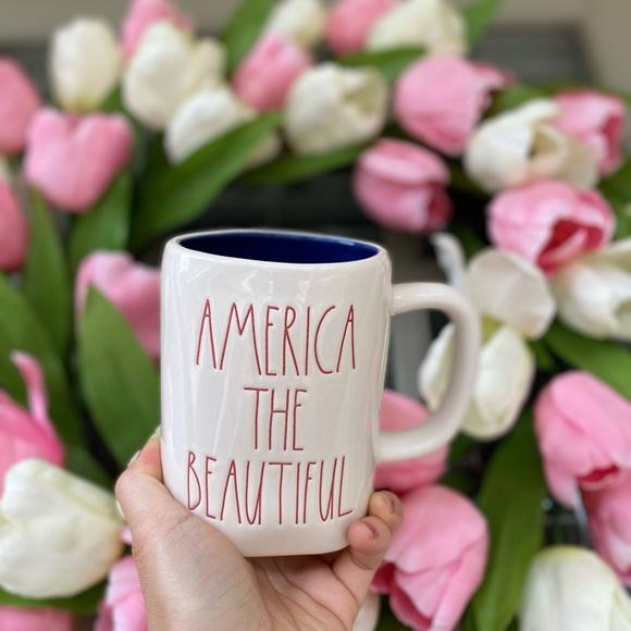 ae dunn America the beautiful mug